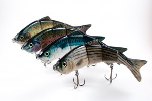Check out our other baits by clicking here