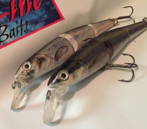 """New hybrid Crankbait/ swimbait 5"""" minnows are just what you need when the fish are keyed in on minnows"""