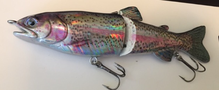 """8"""" folied trout glide bait is perfect for the big bass"""